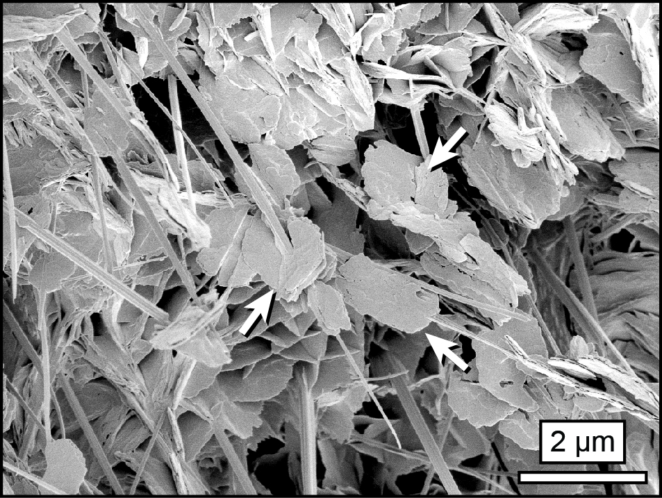 Hydromagnesite plates amongst magnesium oxychloride cement crystals.