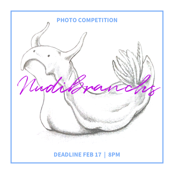 Feb_photocomp.png