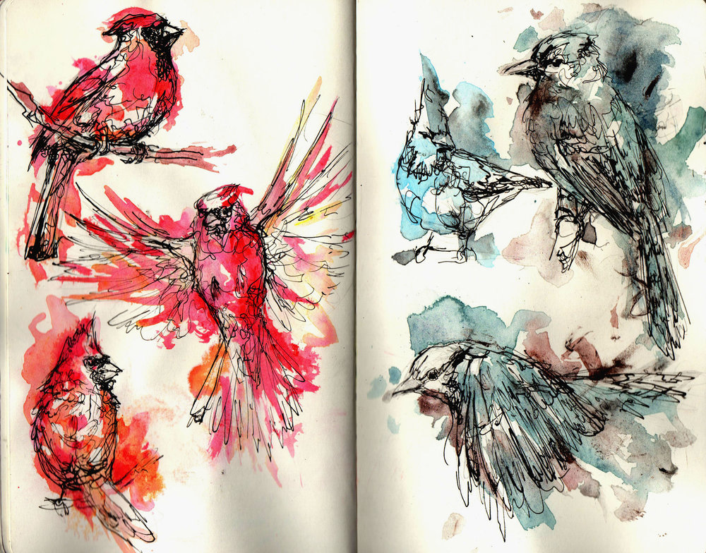 birds0888.jpg