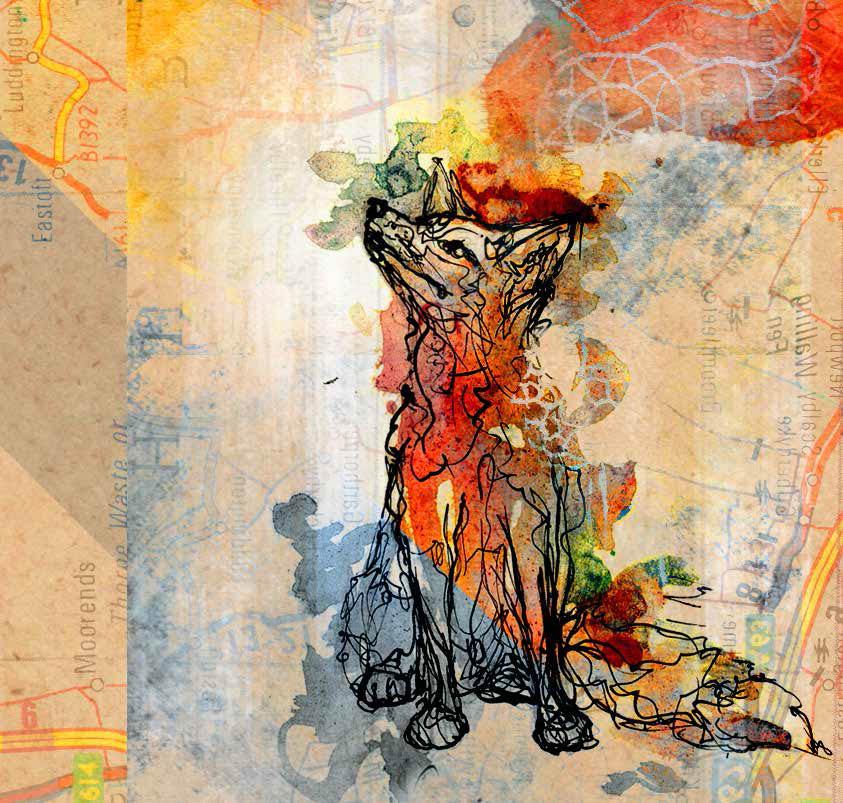 fox online.jpg