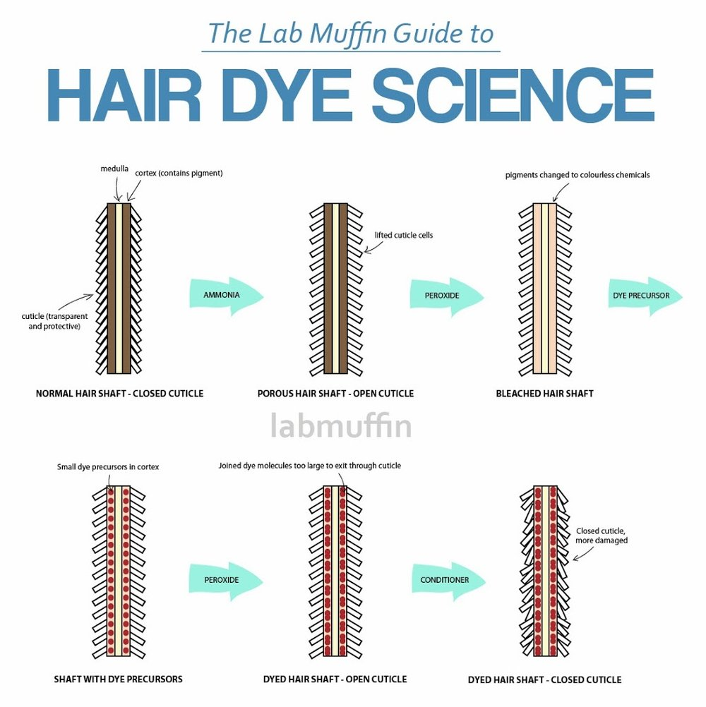 hair-dye-science