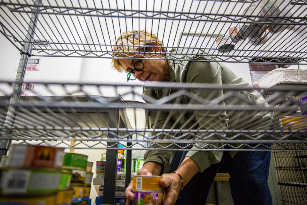 Lynne Tingle, founder and director of Milo Foundation, places cat food on the shelf at the adoption center on Wednesday, Nov. 2.
