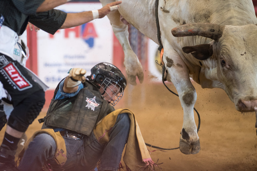 Bull rider Fisher Creason jumps off a bull during the 32nd Annual Weekley Brothers Davie Pro Rodeo for Youth Groups at the Bergeron Rodeo Grounds in Davie, Florida on Friday, June 22, 2018.