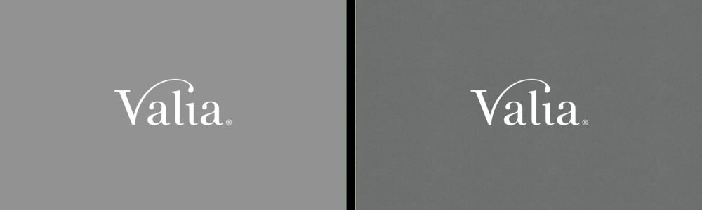 Logotype-Reversed2.png