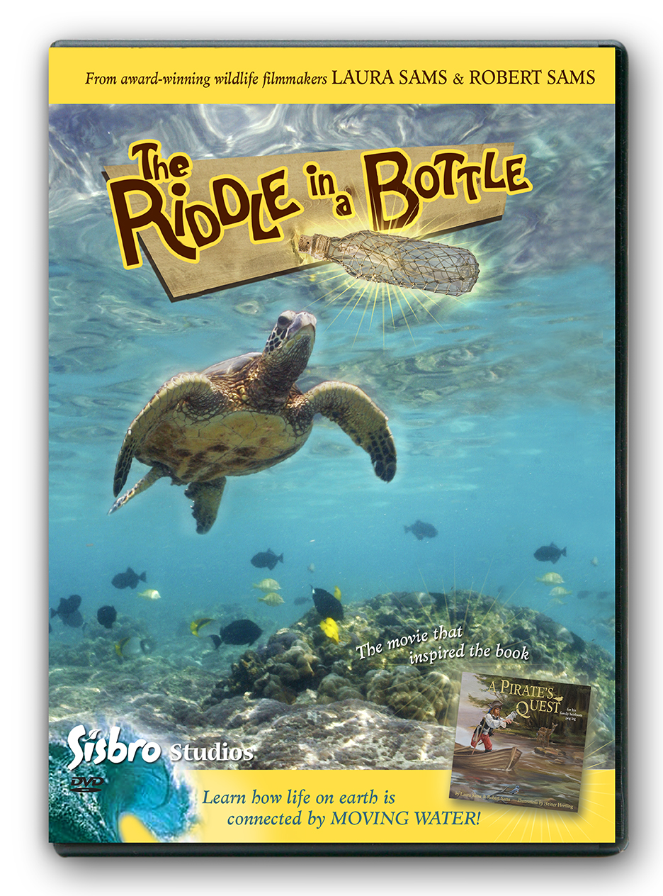 Riddle in a Bottle DVD Cover