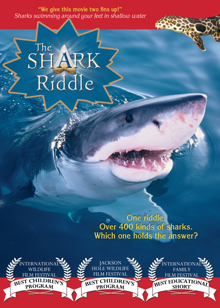 The Shark Riddle DVD