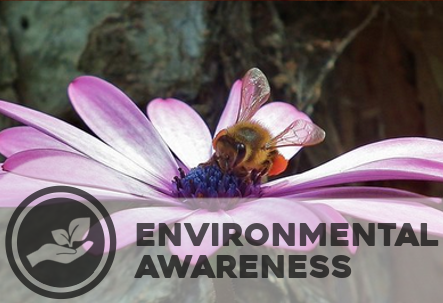 """Environmental awareness - Caring For Life advocates a way of life based on the notion of sustainable living, of """"simple living and high thinking""""."""