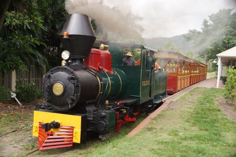 Nelson_the_steam_train.jpg
