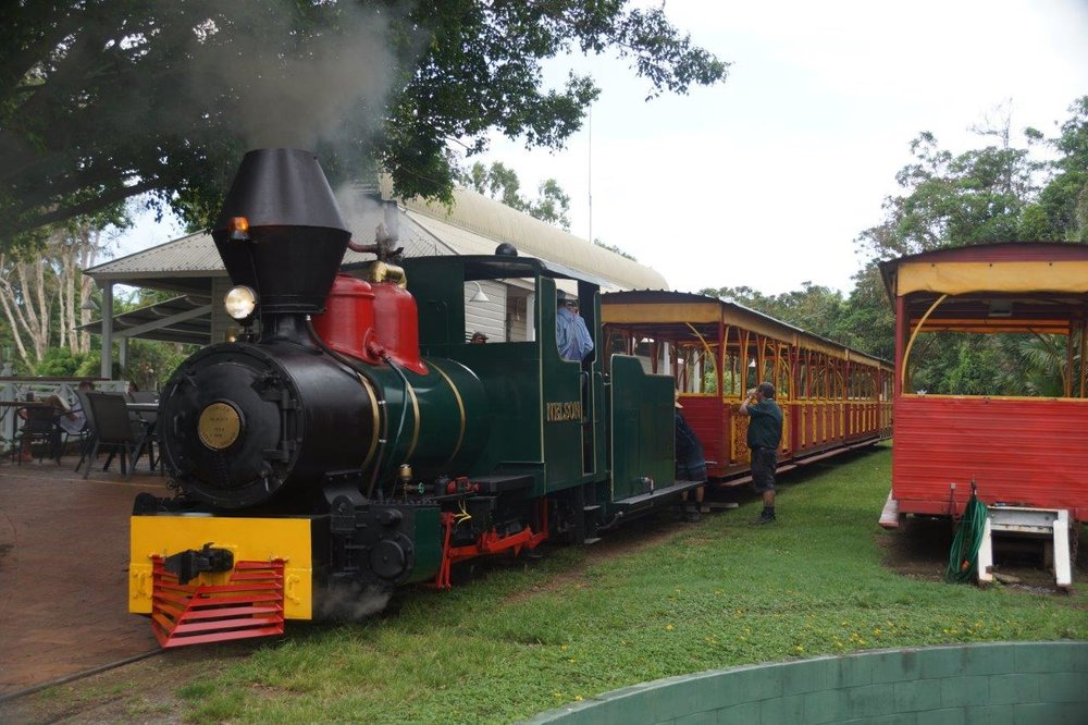 Nelson_steam_train.jpg
