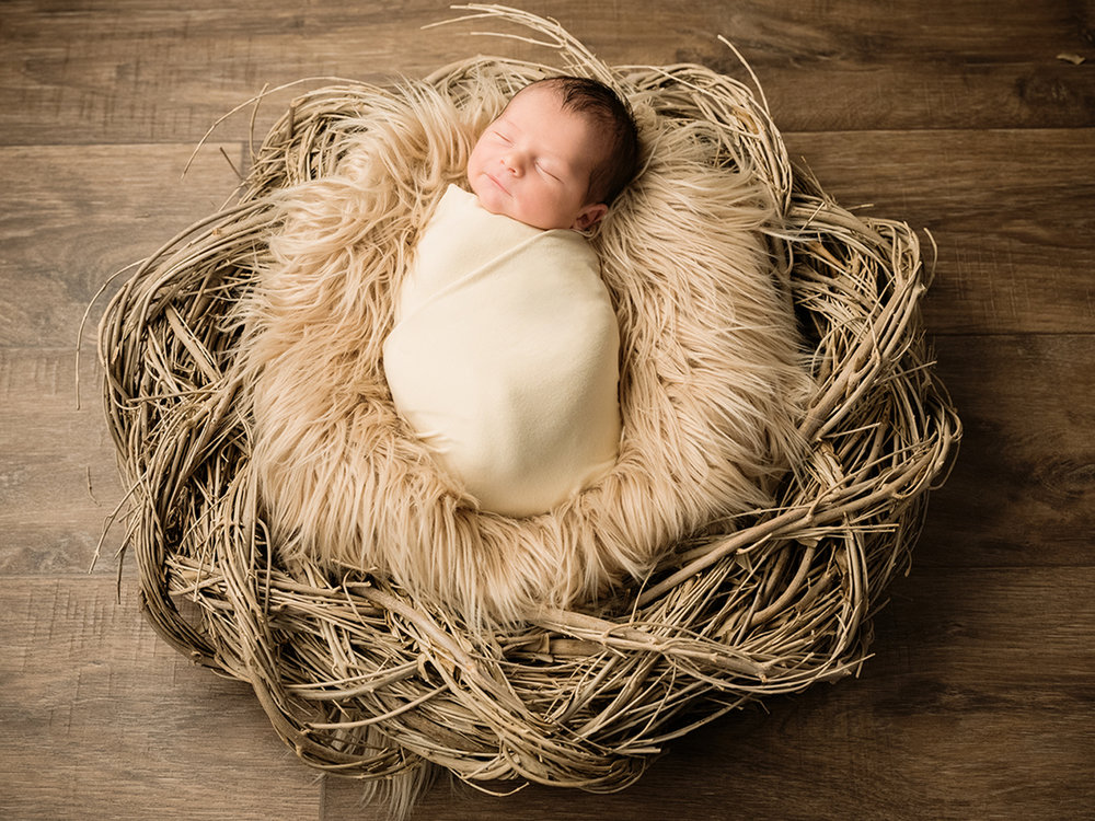newborn-photography-art0003.jpg
