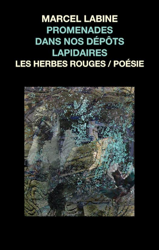 Promenades dans nos dépôts lapidaires     Marcel Labine , 2013