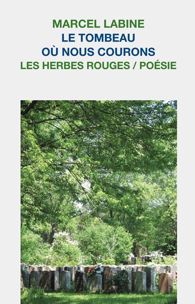ISBN:978-2-89419-333-4  ISBN:978-2-89419-372-3 (epub) ISBN: 978-2-89419-373-0 (pdf)