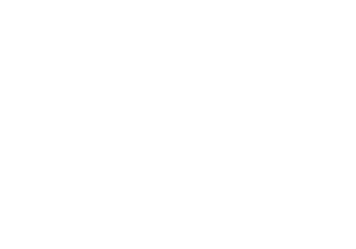 Wedding+industry+Award+Finalist,+2017.png