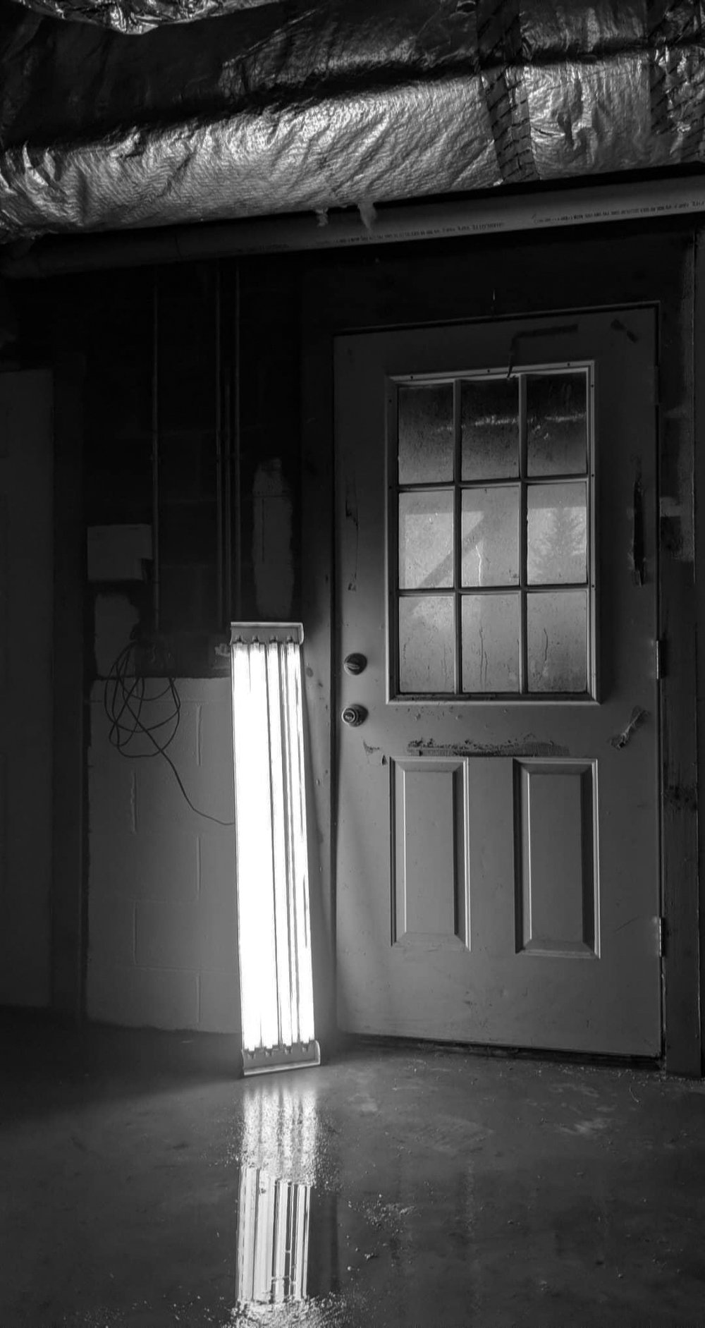 jims_basement.jpg