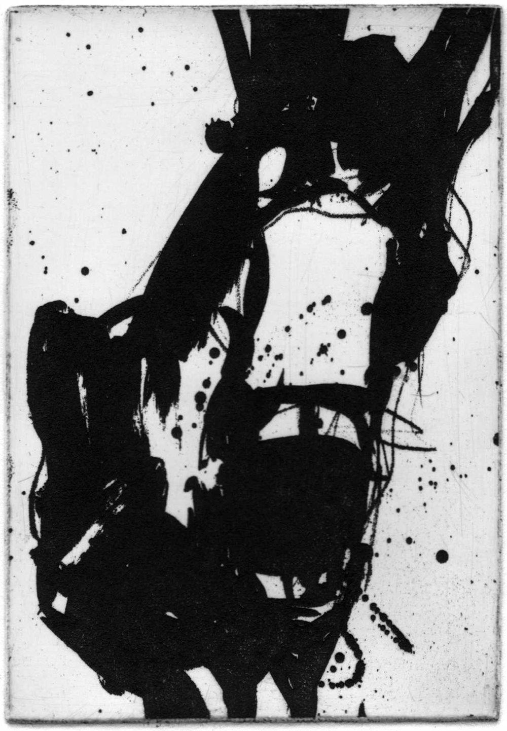 mule etch.jpg