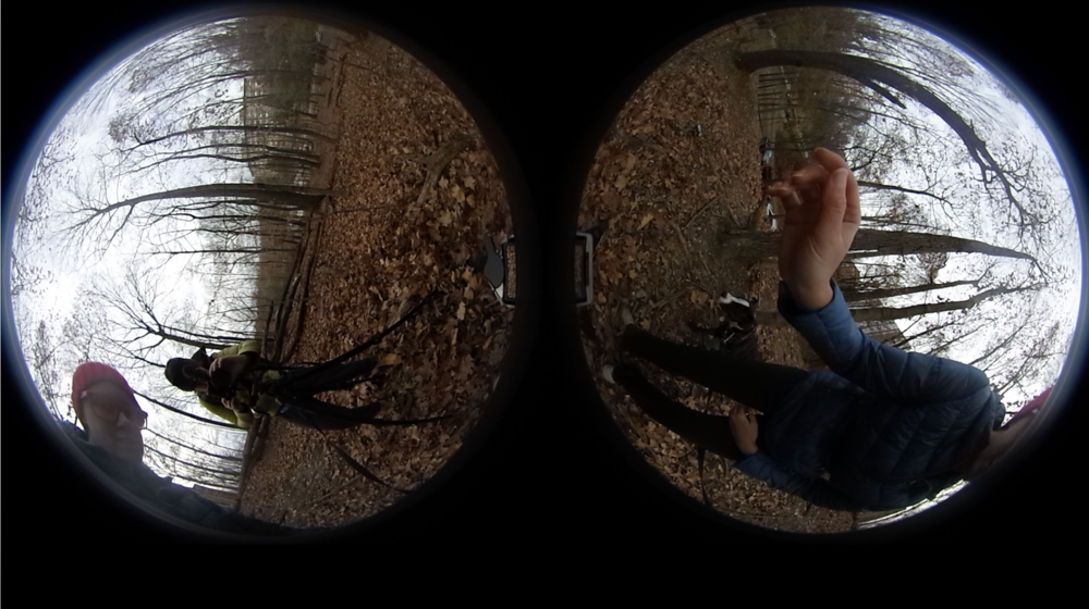 Stereoscopic, side by side, how video is recorded on Ricoh Theta S camera. This is before stitching.