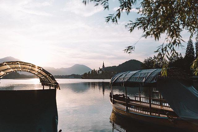 I like Slovenia.