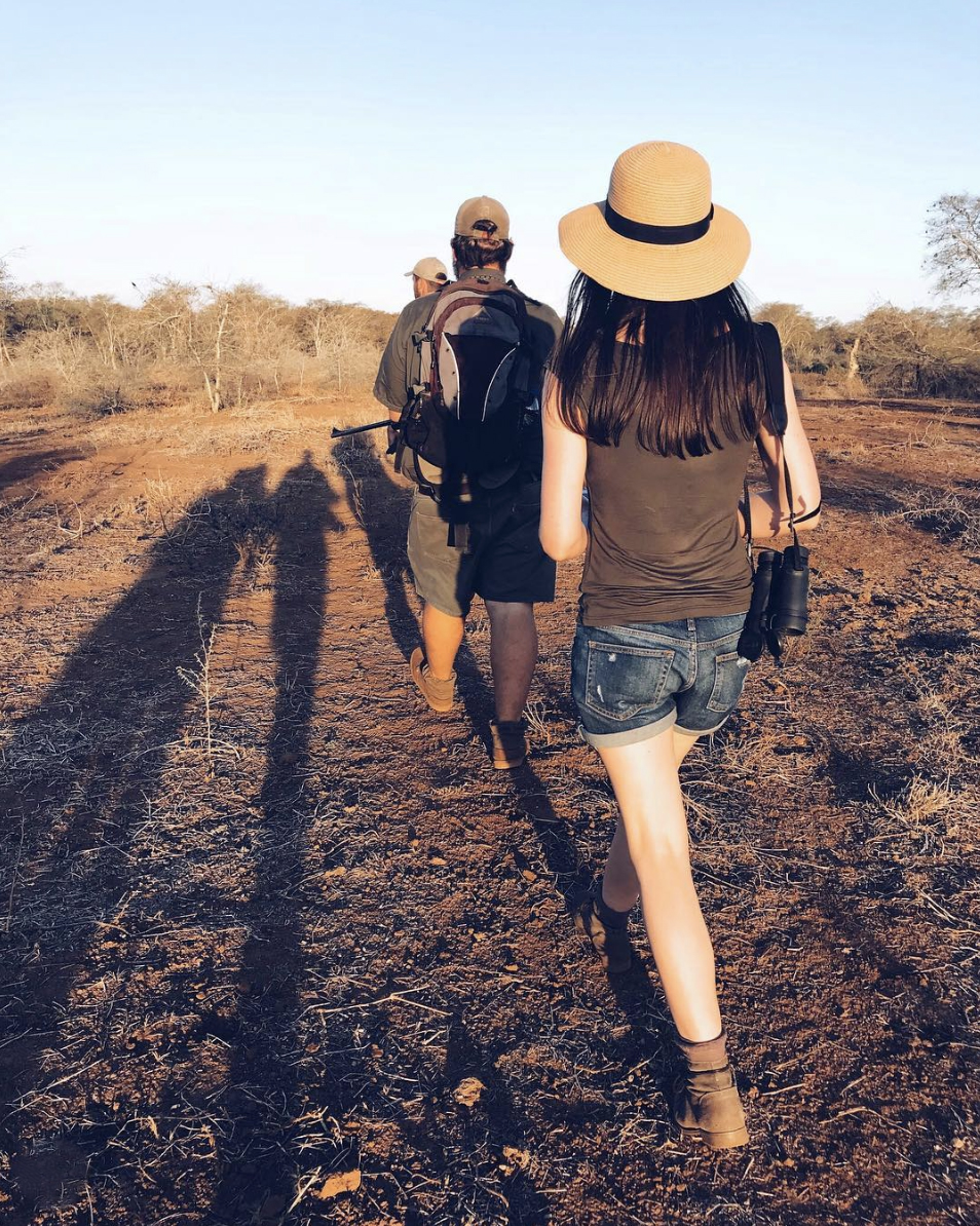 @reneenesbitt   getting 'up close and personal' with the wonders of the wilderness on one of our once-in-a-lifetime walking safaris.