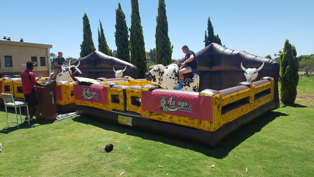DELUXE MECHANICAL TWIN BULLS $990 (3 hour metro hire) including operator