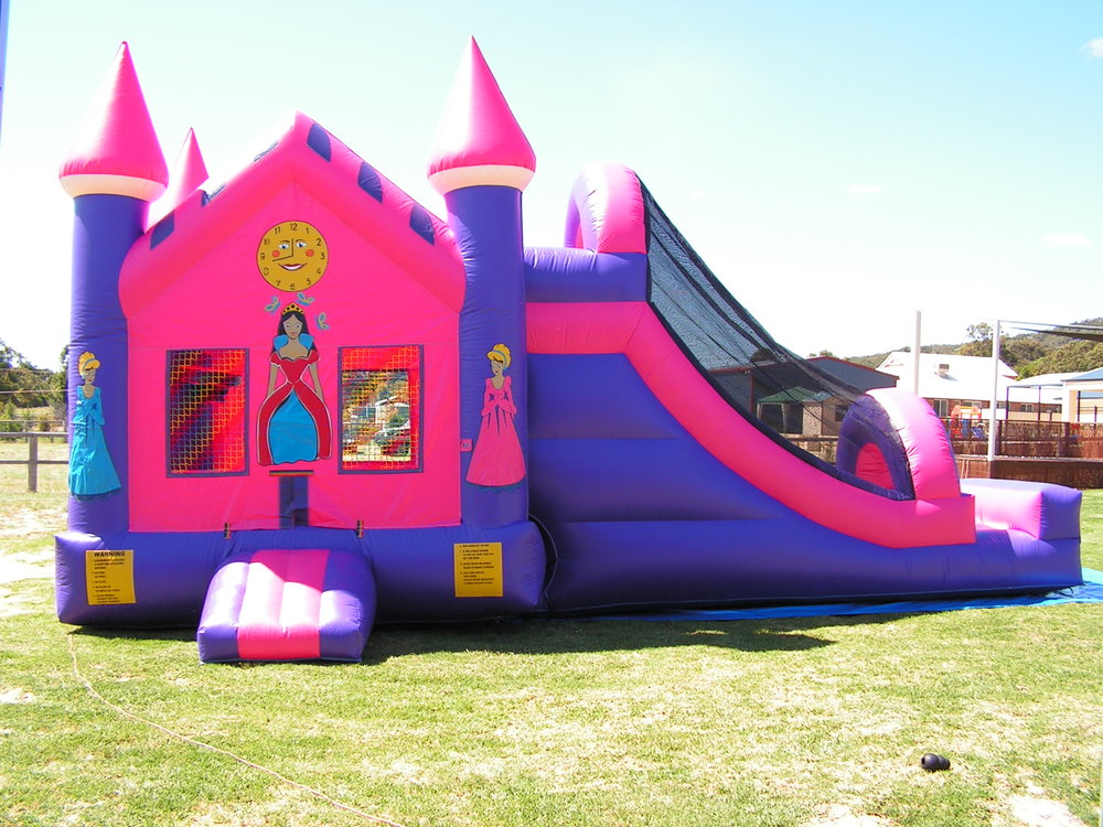 Awesome if you are looking for more than just a Bouncy Castle -