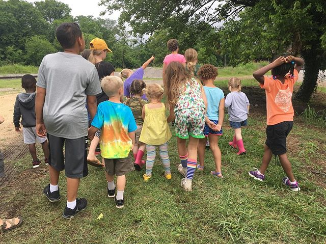 Have you signed up for session 2 of CAB LAB Yet?? Link in bio. Don't miss out!  X #columbiatn #springhilltn #mtpleasanttn #muletown #mycolumbiatn #columbiaartsbuilding #natureschool #artsbasedplay