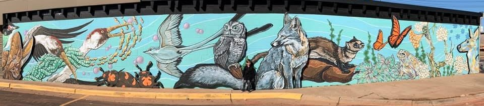 "The ""Wilderness on Western"" by Nick Bayer, James Clark, and Sam Douglas pictures the diverse animals of Oklahoma and highlights some or our endangered species. This mural, on NW 71st Street and N. Western Avenue, includes sculptural elements that give it a 3D vibe."