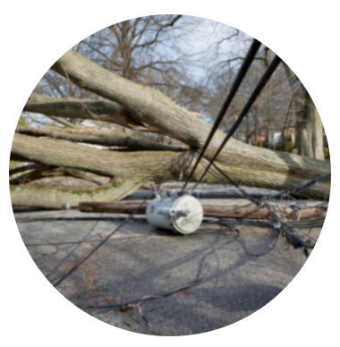 Tree service with storm damage in Poughquag NY