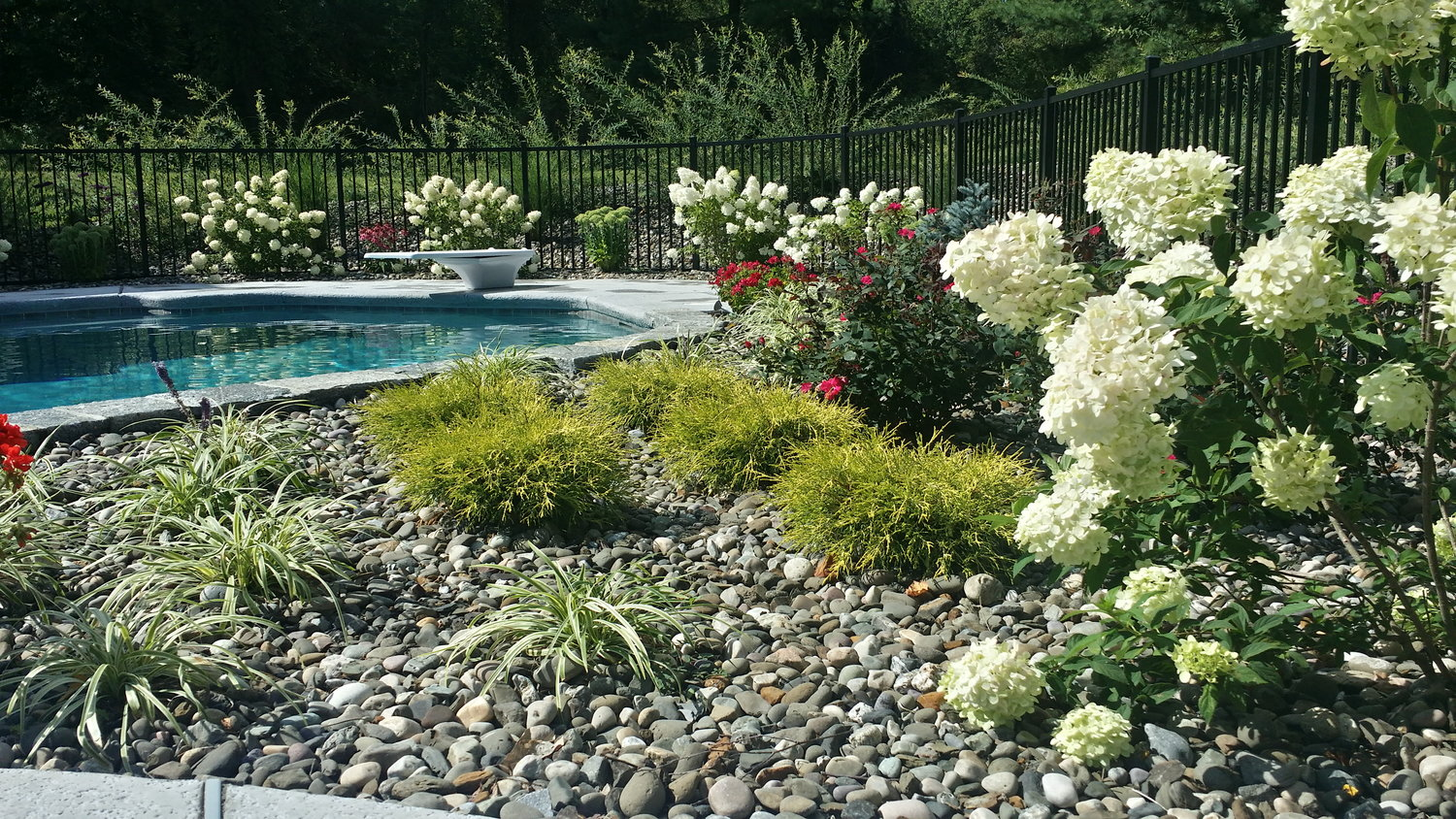 Lehigh Lawns And Landscaping Poughkeepsie Amp Wappinger Falls NY