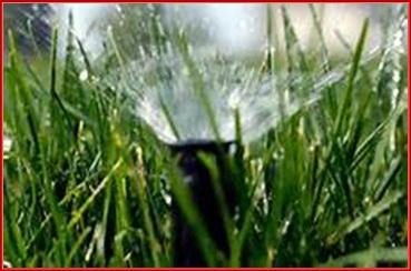 irrigation_startup