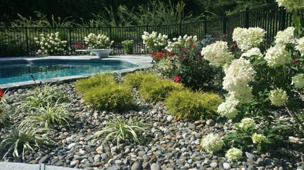 poolside patio and deck plantings in dutchess county, ny