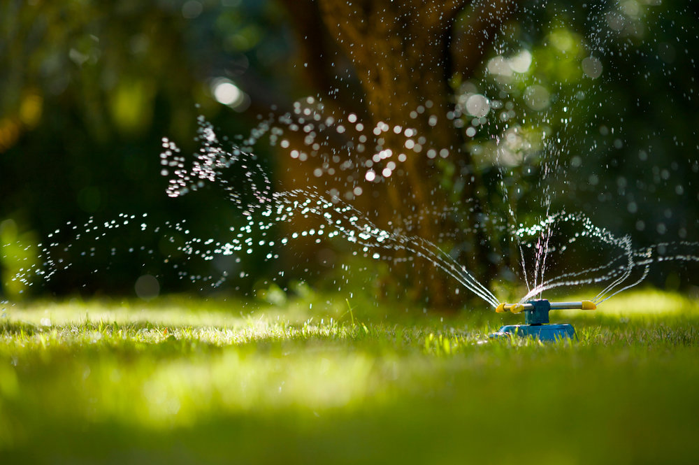 4 Water Saving Irrigation Solutions for Putnam County, NY