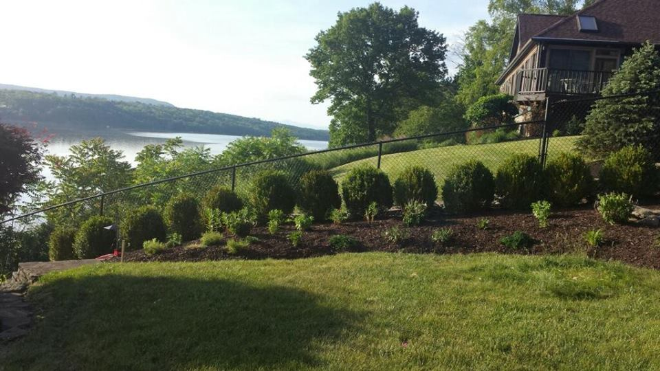 Why Summer Lawn Care Is So Important in Fishkill, NY