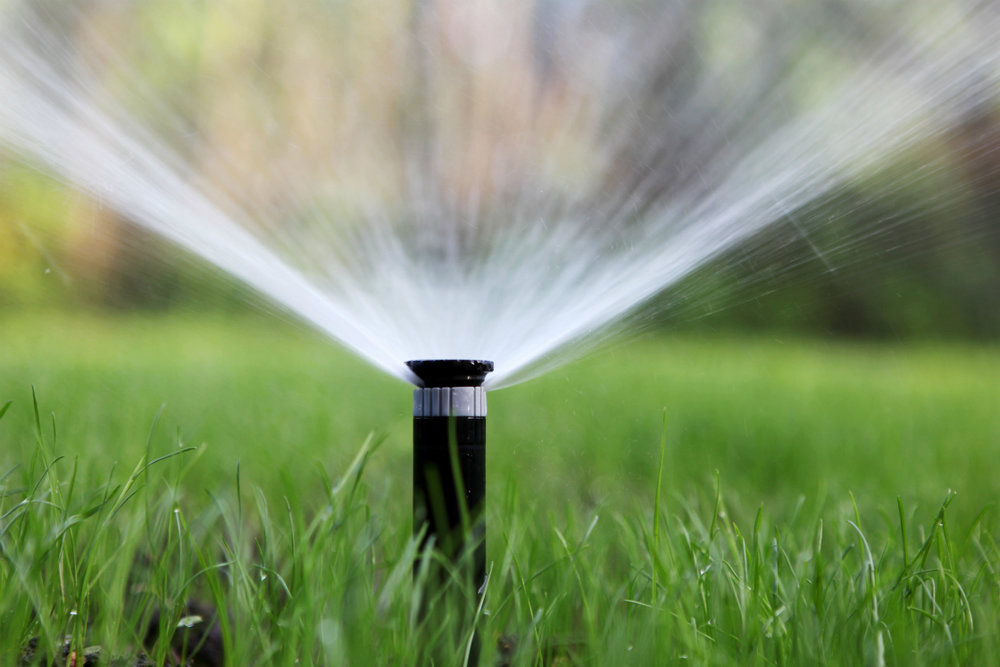 How Irrigation Requirements for your Landscape Change in Fall and Winter in Lagrangeville, NY