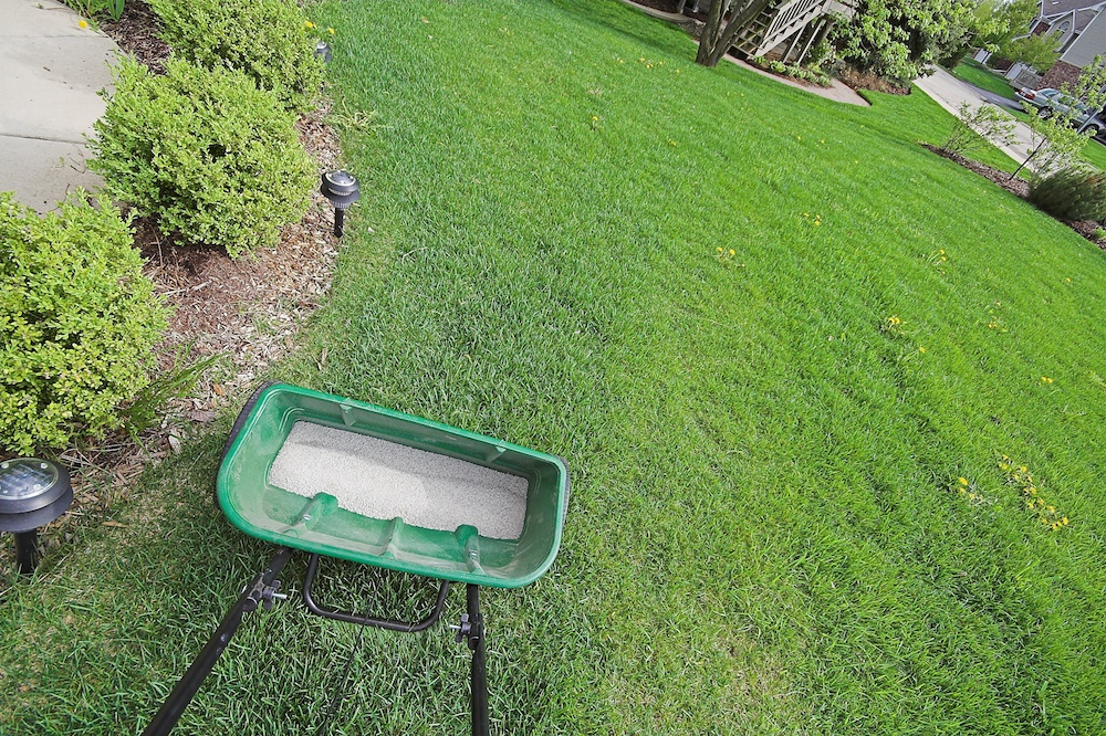 Why You Should Hire a Lawn Fertilization Expert to Take Care of Your Lagrangeville, NY, Property Instead of DIY