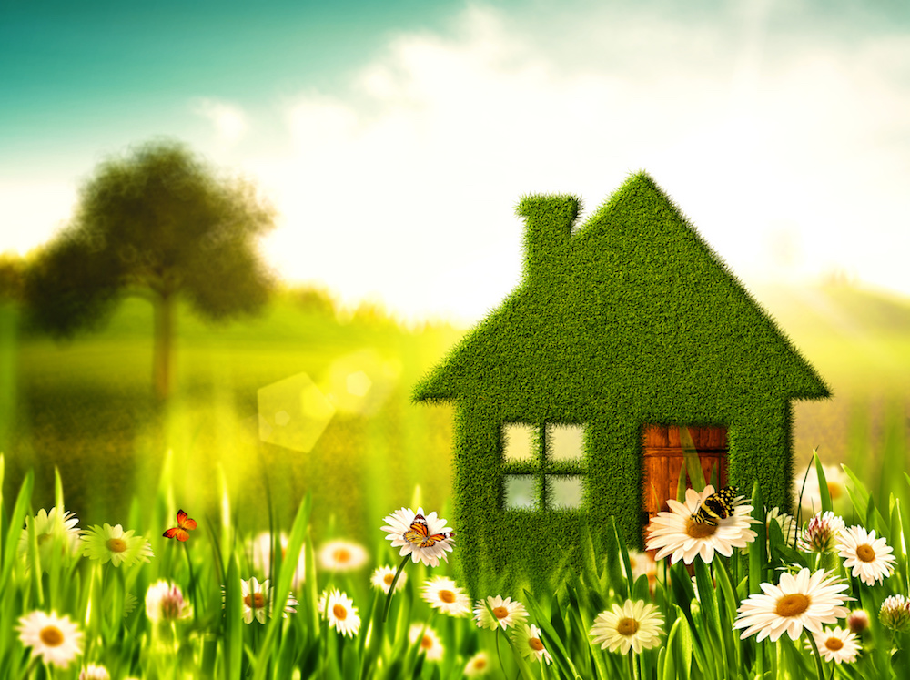 How Lawn Fertilizer Service Can Add Curb Appeal to Your Poughkeepsie, NY, Property