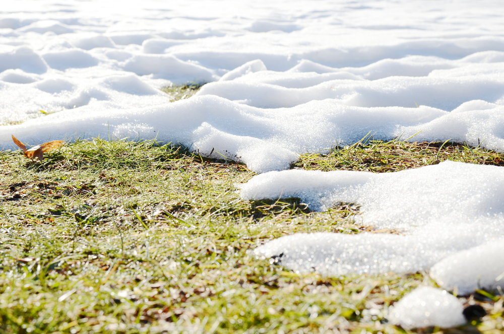 5 Tips for Winter Lawn Care and Fertilization in Wappingers Falls, NY