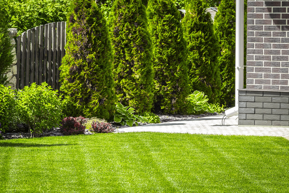 Using Lawn Fertilizers Responsibly in Pouhkeepsie, NY