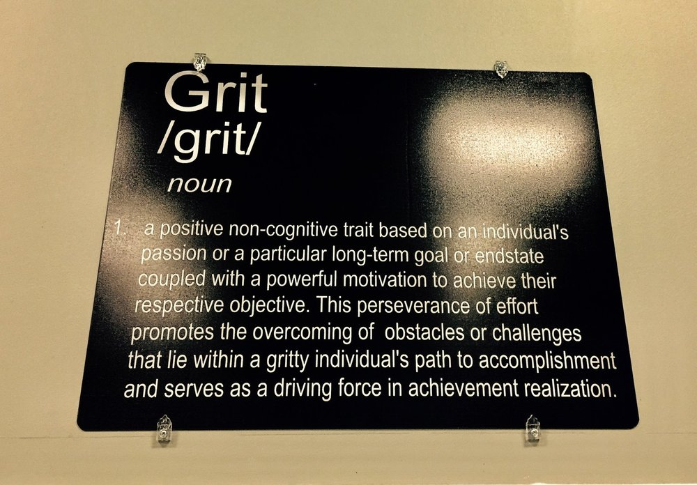 Grit: noun 1. a positive non-cognitive trait based on an individual's passion or a particular long-term goal or end state coupled with a powerful motivation to achieve their respective objective. This perseverance of effort promotes the overcoming of obstacles or challenges that lie within a gritty individual's path to accomplishment and serves as a driving force in achievement realization
