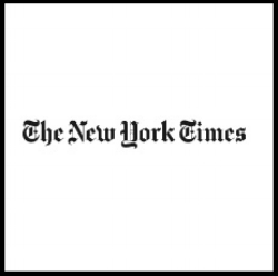 Book blogger - The New York Times - Lounge Books