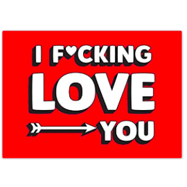 LB - Image - Book - Christmas 2018 - Fucking Love You.png