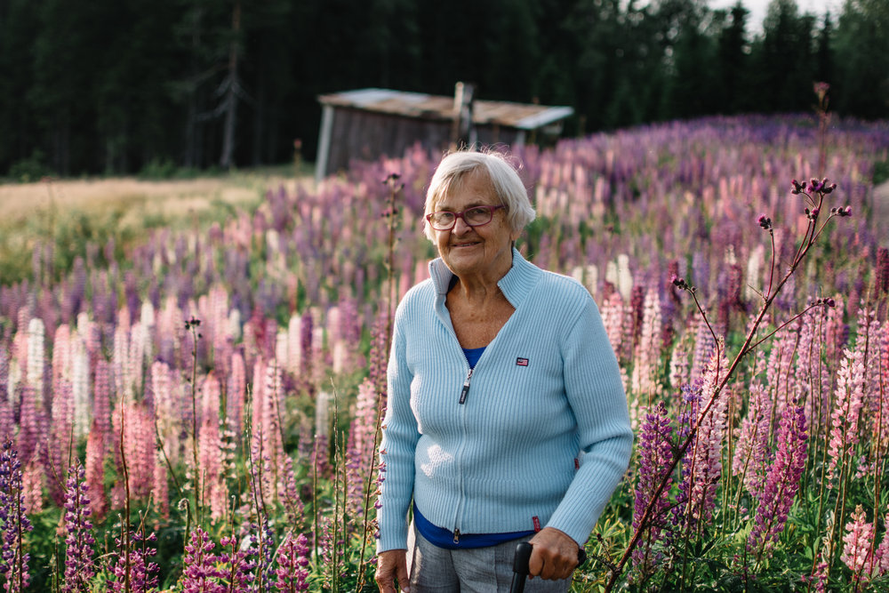 Vanja Dudley-Ward stands in the evening sun amongst a field of lupins on her last trip back to Sweden, her home country.