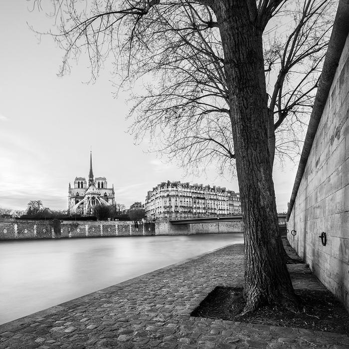 03. Cathédrale de Notre Dame, study II - 2014