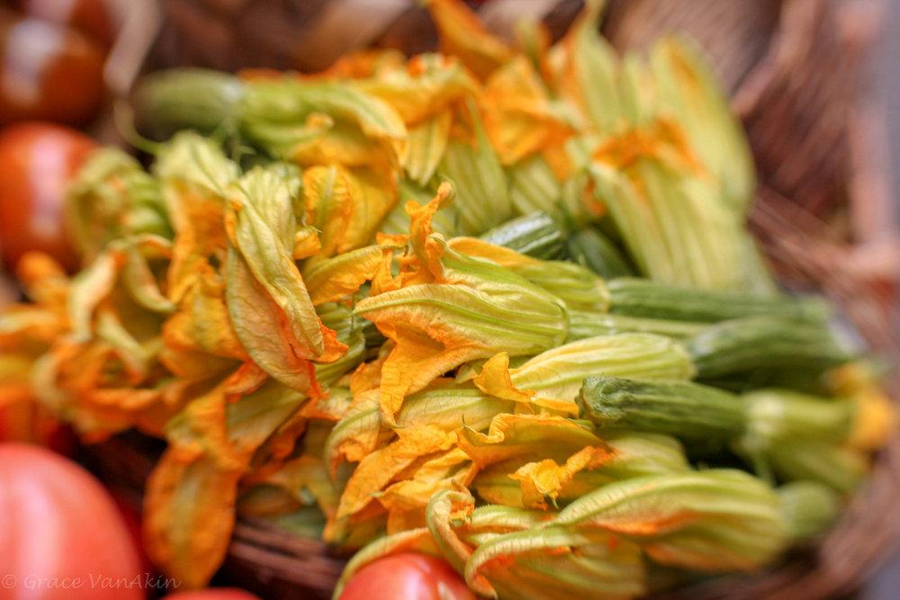 Squash Blossoms.jpg