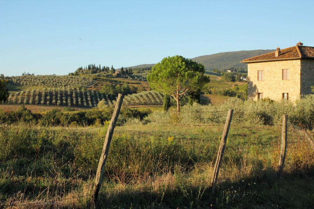 Tuscany (37 of 88).jpg