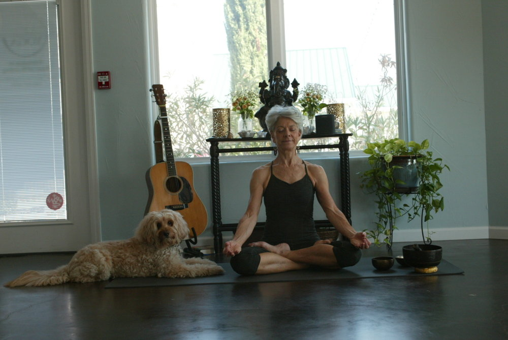 Upward Facing Dog & Lotus