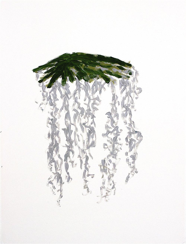 Spanish Veil.jpg