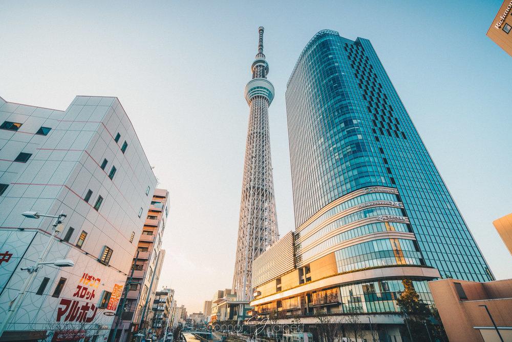 Tokyo Skytree (center)
