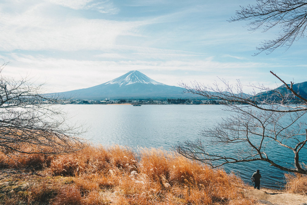 Man looking out at Mt. Fuji at Lake Kawaguchi
