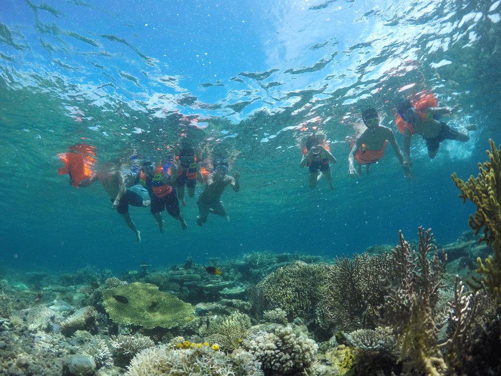 Reef Togean
