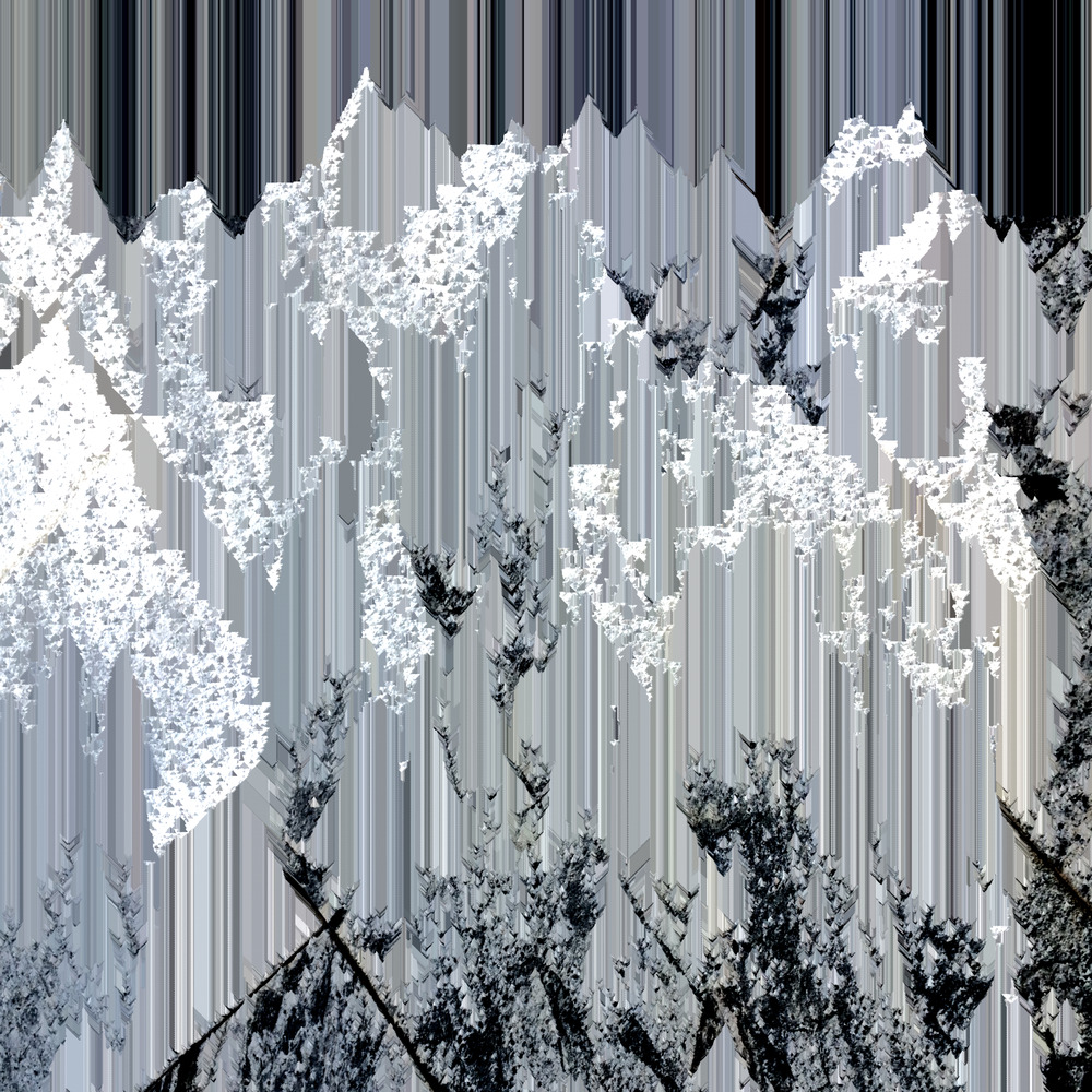 digital mountain.png